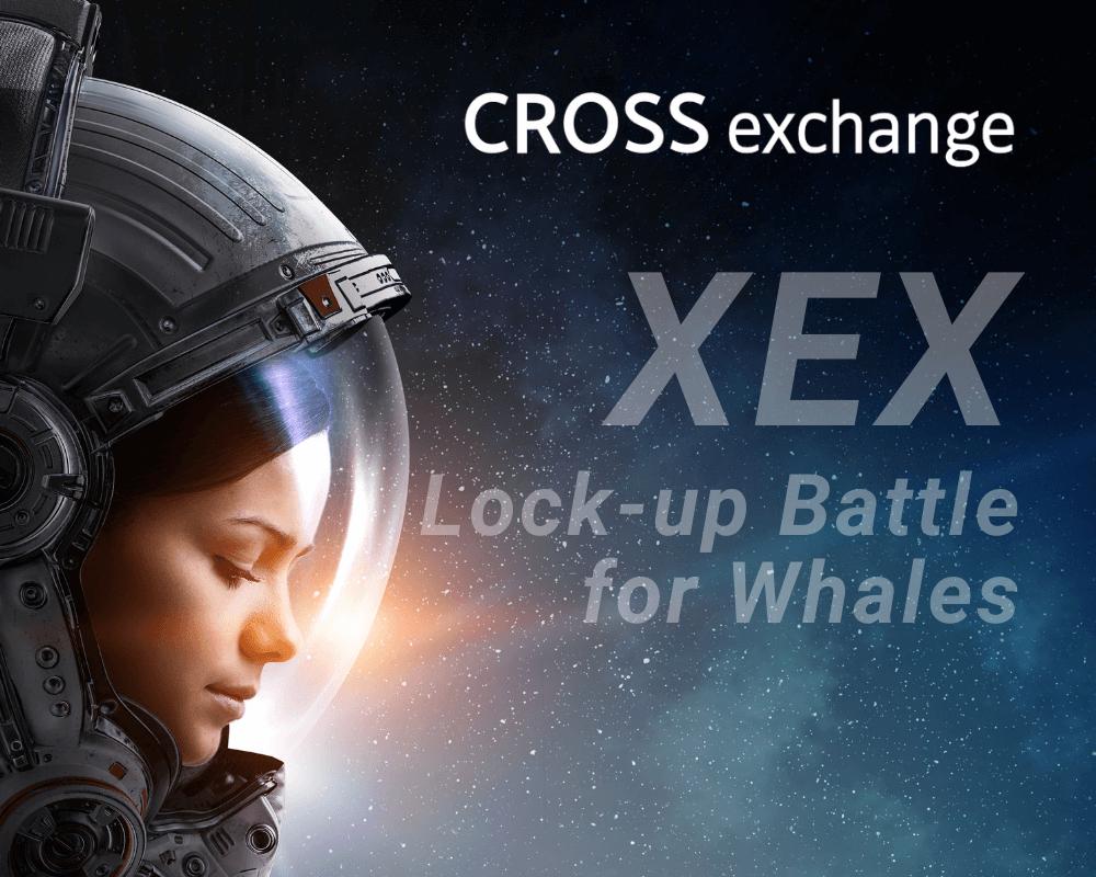 XEXロックアップバトルは横目で