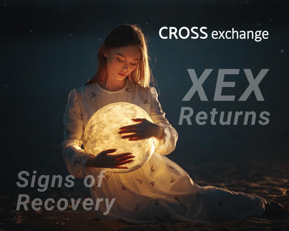 CROSS exchangeリターンズ?